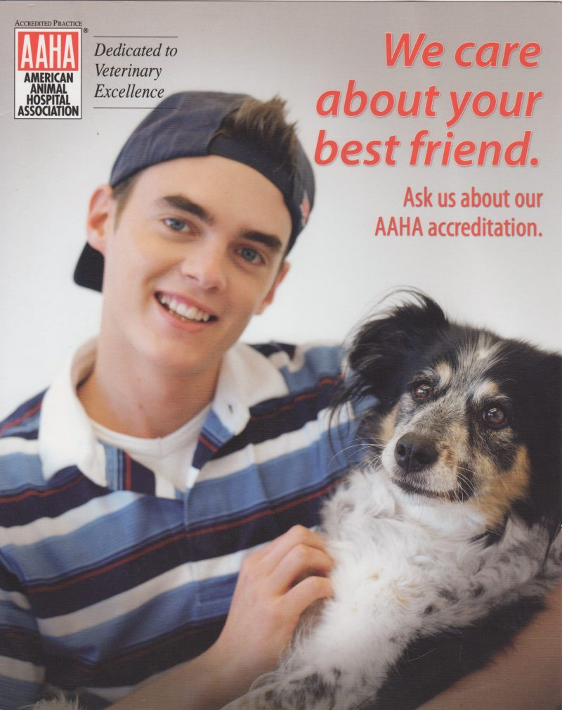 AAHA information with We care about your best friend text